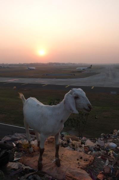 Mumbai_airport_web